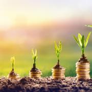 Prinzip einer Anlegerwohnung